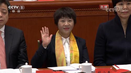 改革开放中涌现的优秀农民工代表 胡小燕