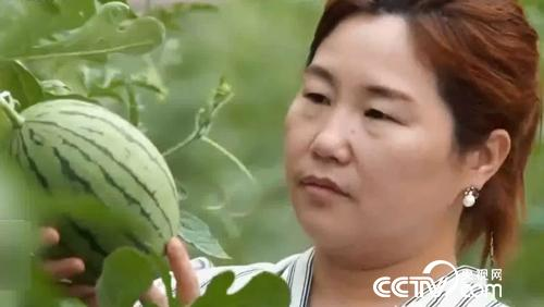 【改革开放40年·共话三农】把住时代脉搏 异乡农民再扬风帆