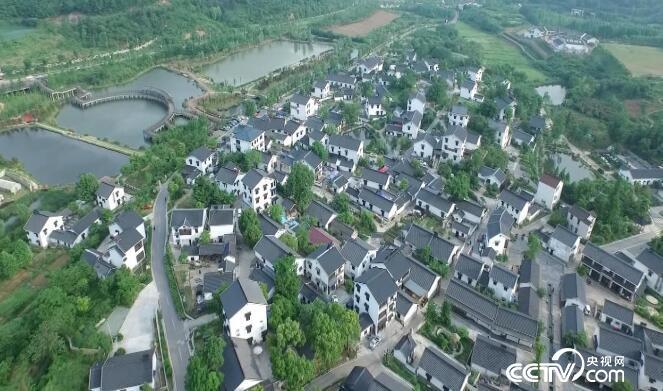 美丽中国乡村行:乡村振兴看中国--产业旺 12月20日