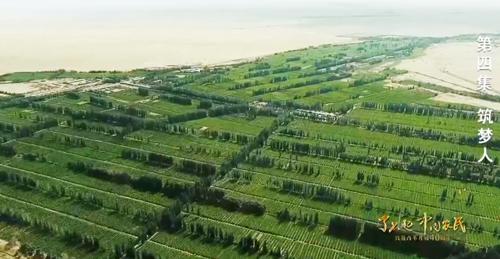 建设美丽生态家园 中国农民正创造着绿色奇迹