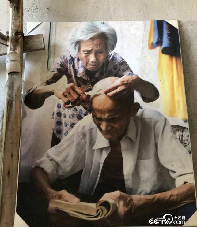 图为童汉芳母亲给正在阅读的父亲修剪鹤发