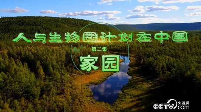 乡土:人与生物圈计划在中国 第二集 家园 12月25日