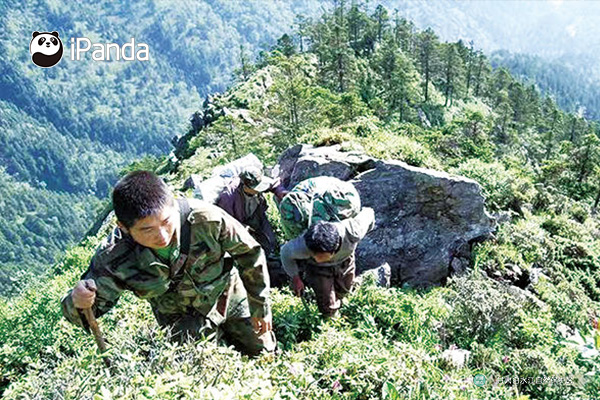保护区管护员在山坡上艰辛跋涉