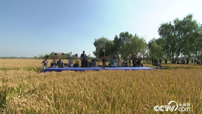 乡土:义安农场来做客 1月4日