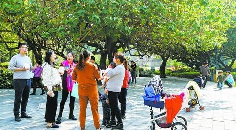 昨日晴暖,不少家长带孩子到公园享受暖阳