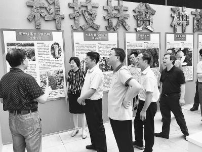 省政协重点提案督办调研组在三明调研。(陈智明 摄)