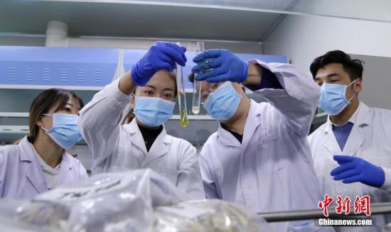 资料图:药剂师正在制药研究中。中新社记者 马铭言 摄
