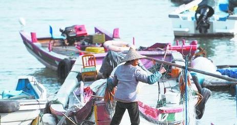 昨日天气晴朗,图为集美海堤的渔船上,渔民正在晒网