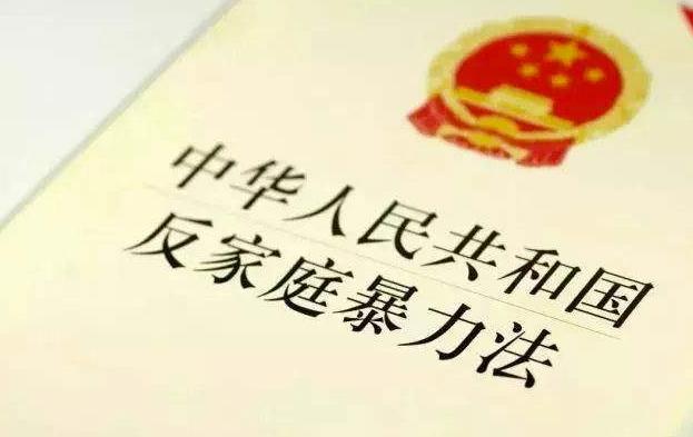 保普选反暴力_中华人民共和国反家庭暴力法_国际特赦组织批各国反暴力表现不济