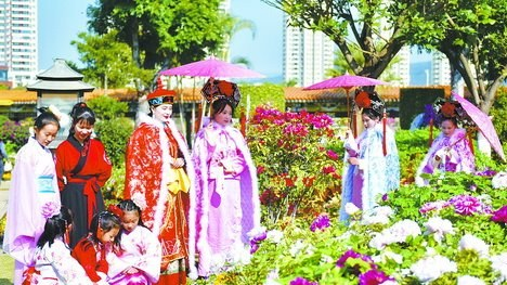 春节期间,到同安影视城邂逅富贵牡丹。