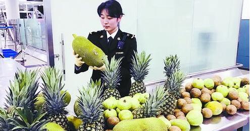 厦门海关查获181斤水果。