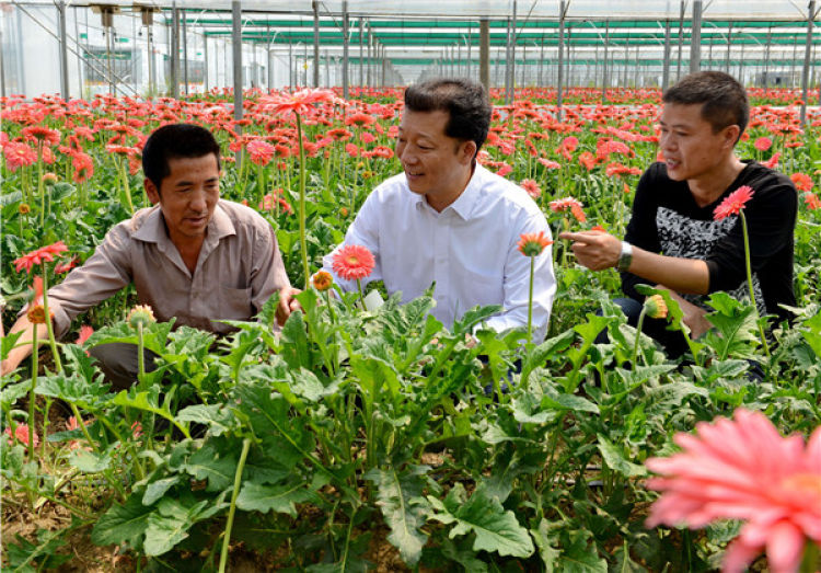 廖俊波(中)在福建省政和县铁山镇东涧村向花农了解花卉生产情况(2014年4月18日摄)。 新华社发(徐庭盛 摄)