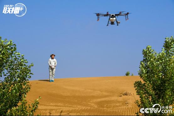 在内蒙古鄂尔多斯市杭锦旗的库布其沙漠中,技术人员操控无人机飞播造林。