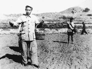谷文昌同志1958年在东山县坑北村参加播种。新华社发