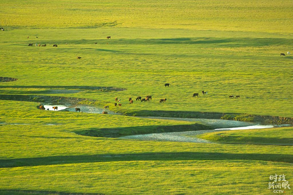 锡林郭勒草原是我国保存较为完好、生物多样性丰富的温带草原,也是我国北方重要的生态安全屏障。盛夏时节,风光旖旎。