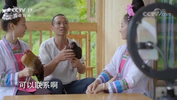 贵州盖宝村村民刘太清直播销售绿壳蛋鸡