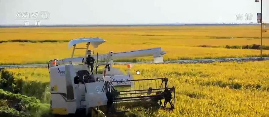 种质资源是作物新品种的源头 推动种业振兴原始创新