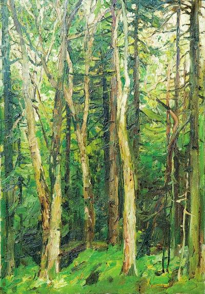壁纸 风景 森林 桌面 650_867 竖版 竖屏 手机