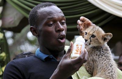CCTV-Bolt et son bébé guépard