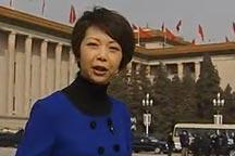 <br><b>Tian Wei observations about this year´s CPPCC session</b><br><br>