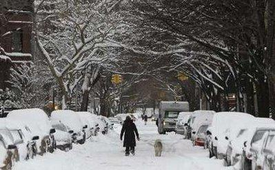 Snow covers a street in Brooklyn, New York December 20, 2009. Heavy snowfall blanketed the East Coast on Saturday, disrupting public transport and air travel, and hampering holiday shoppers on the last weekend before Christmas. REUTERS/Brendan McDermid