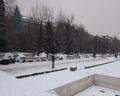 保加利亚中国商会祝福祝福祖国