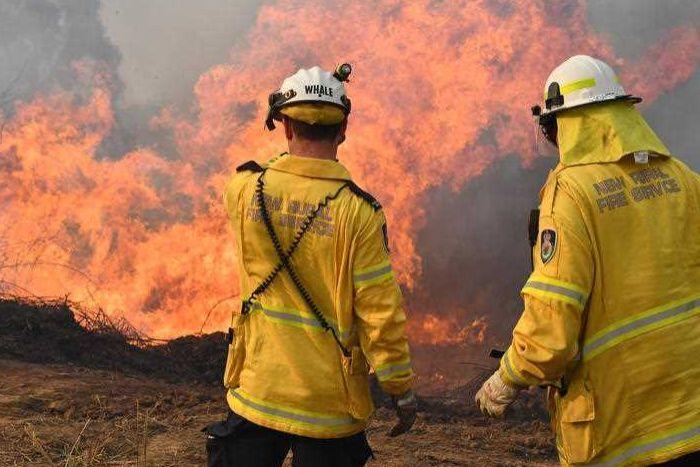 澳大利亚新南威尔士州北部森林大火超过6万公顷