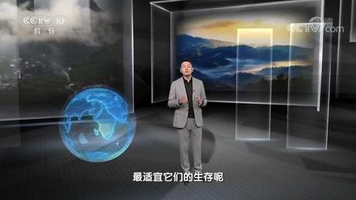 《地理·中国》 20191225 仙山秘境·百花岭寻奇