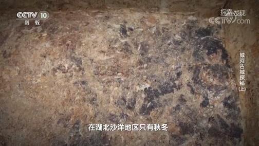 [探索·发现]考古队员推测城墙修筑的具体时间可能是在秋冬季节