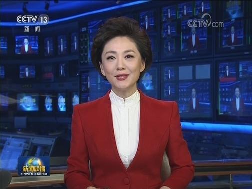 [视频]欢迎中外记者采访十三届全国人大三次会议和全国政协十三届三次会议