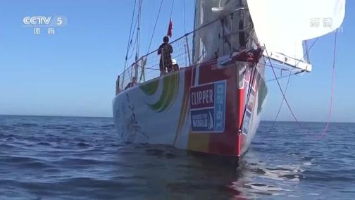 """[帆船]克利伯环球帆船赛:三亚号""""回家"""""""