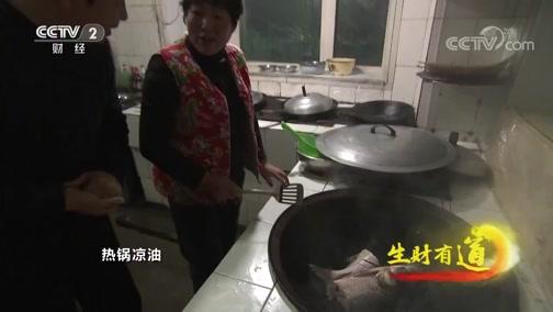 [生财有道]特色鱼馆烹饪特色美味 铁锅炖大鱼色香味俱全