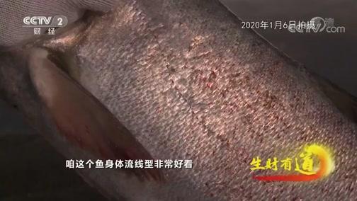 [生财有道]冰上打鱼不可预测 渔业工人期盼红网