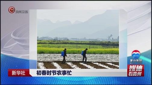 [贵州新闻联播]新华社 初春时节农事忙