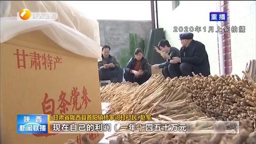 [陕西新闻联播]甘肃陇西:老赵一家三代的药材致富梦