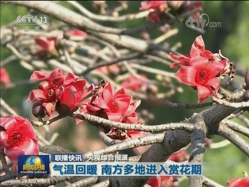 [视频]国内联播快讯