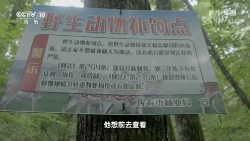 [地理·中国]工作人员人工清除猎套