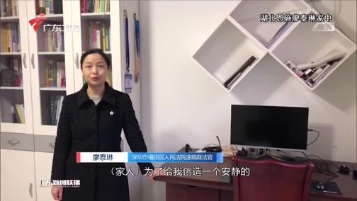 """[广东新闻联播]广东法官在湖北老家""""云复工"""" 两周开庭18次"""