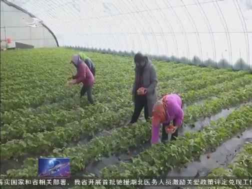 [吉林新闻联播]吉林:千方百计帮贫困群众增收致富