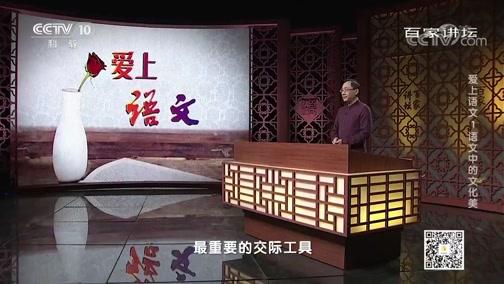 [百家讲坛]语文的重要性