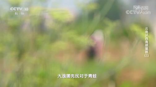 《探索·发现》 20200327 《2020考古探奇》 第二季 云南泸西青铜墓葬(三)