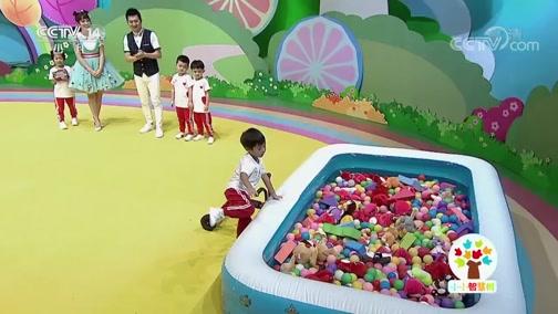 [小小智慧树]西瓜桔子做游戏:海洋池里来寻宝