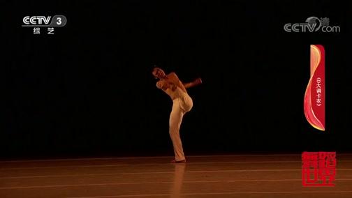 [舞蹈世界]舞蹈《D大调卡农》 表演:管翀正 申梦凡 闫华龙