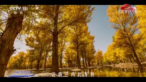 《中国音乐电视》 20200528