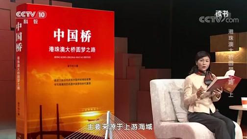 [读书]曾平标:《中国桥:港珠澳大桥圆梦之路》