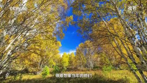 [读书]冯小军 尧山壁:《绿色奇迹:塞罕坝》