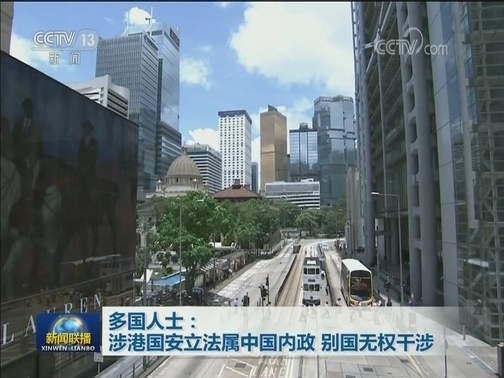 [视频]多国人士:涉港国安立法属中国内政 别国无权干涉