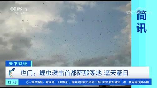 [天下财经]也门:蝗虫袭击首都萨那等地 遮天蔽日