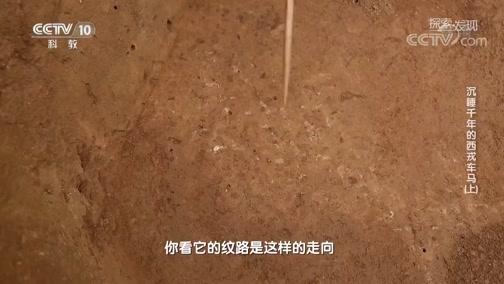 [探索·发现]38号墓内的皮席
