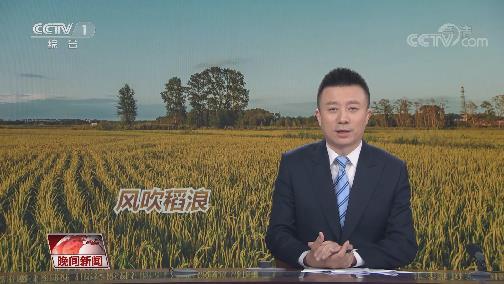 """[视频]""""双夏""""农忙正当时"""